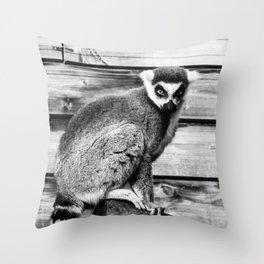 Ring Tailed Lemur - by Cheryl Gerhard Throw Pillow
