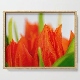 Aliquam tulips Serving Tray