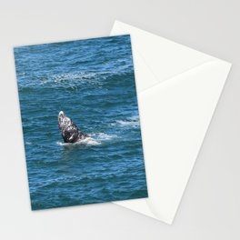 Whale Tail Stationery Cards