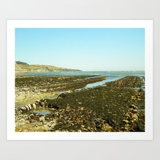 Bowling Ball Beach XII Art Print