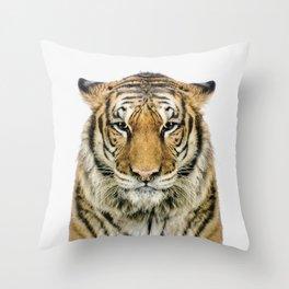 African Tiger Throw Pillow