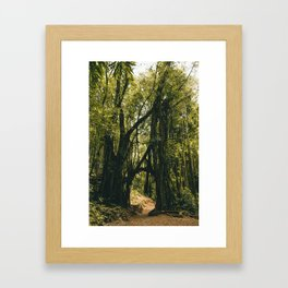 Jungle Book Meets Narnia Framed Art Print