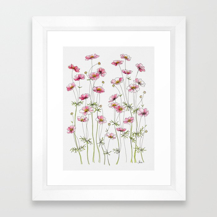 Pink Cosmos Flowers Framed Art Print