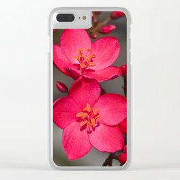 Red and Pink Tropical Fiji Flowers Clear iPhone Case