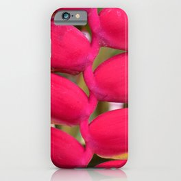 Tropical Curves iPhone Case