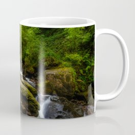 Torc waterfall - Ireland (RR 169) Coffee Mug