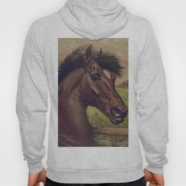 Vintage Horse Illustration (1893) Hoody
