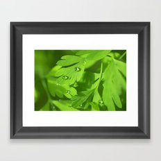 Spring Morning 412 Framed Art Print