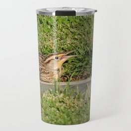 A Young Western Meadowlark Awaits Travel Mug