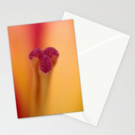 Lily Glory Stationery Cards