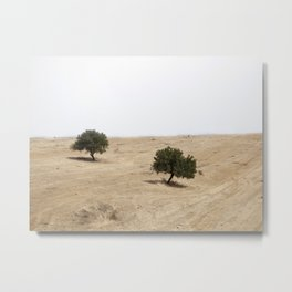The holm oak Metal Print