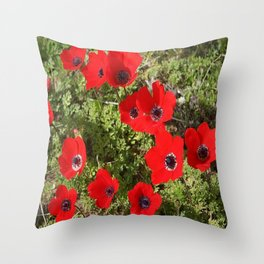 Wild Anemone Flowers In A Spring Field Throw Pillow