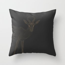 All lines lead to the...Springbok Throw Pillow