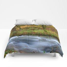 Twin Springs Fall 2019 Comforters