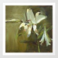 Lily Bliss I Art Print