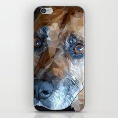 Mosley Dog iPhone & iPod Skin