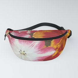 Red and Orange Tulips Fanny Pack