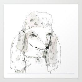 Poodle Art Print