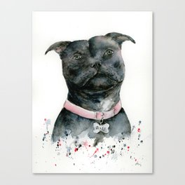 Watercolor Black Staffordshire Bull Terrier Dog Canvas Print