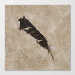 Antique Crow Feather Canvas Print