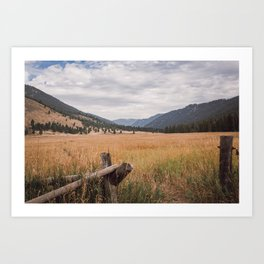 The Montana Collection - Durnam Meadow Art Print