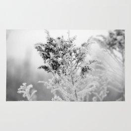 Winter Fairyland Rug