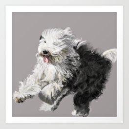 Old English Sheepdog On the Move Art Print