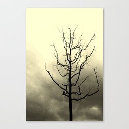 Strong enough Canvas Print