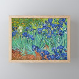 Vincent Van Gogh Irises Painting Detail Framed Mini Art Print