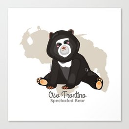 Oso Frontino/Spectacled Bear Canvas Print