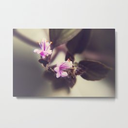SOMETHING ABOUT FLOWERS Metal Print