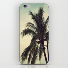 Key West Palms iPhone & iPod Skin
