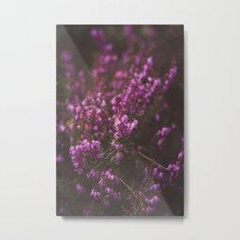Purple Little Flowers in My Garden Metal Print