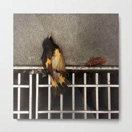Bird and Roach Metal Print