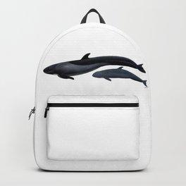 False killer whale Backpack
