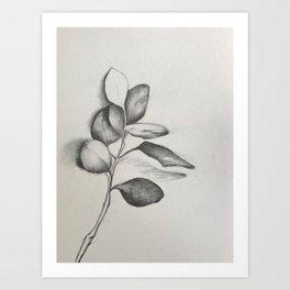 Extend a Branch Art Print