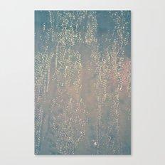 #137 Canvas Print