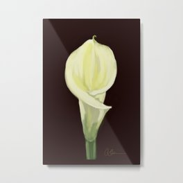 Portrait of a Calla Lily DP160213-14 Metal Print