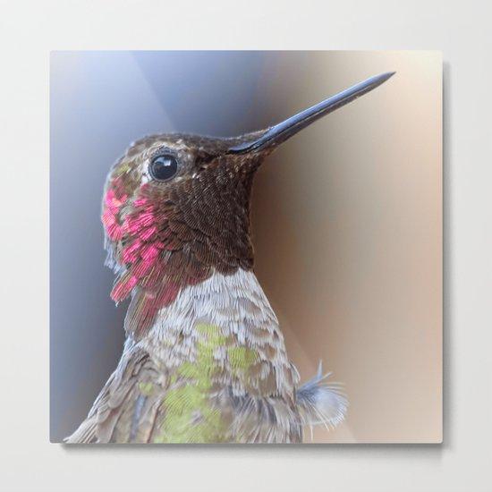 Bird color 5 Metal Print