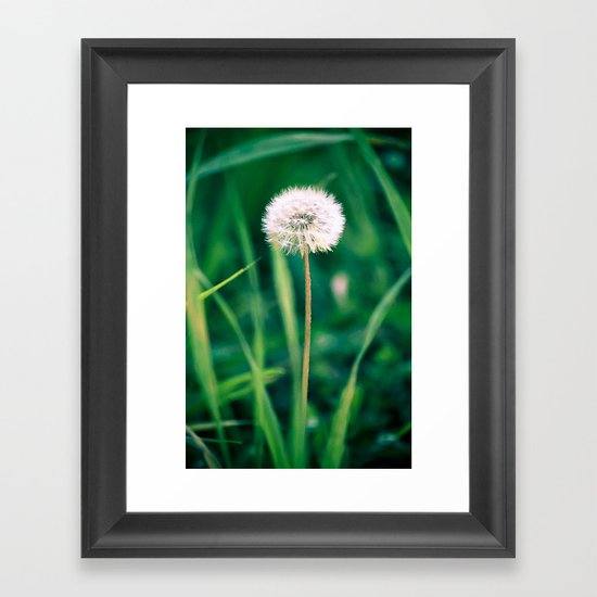 Fluffy Flower Framed Art Print