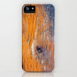 Eye of The Barn 2 iPhone Case