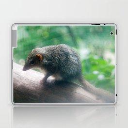 Kangaroo Island Dunnart Laptop & iPad Skin