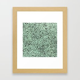 cheeta  Framed Art Print