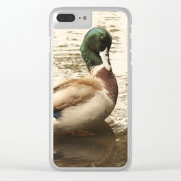 What, Me Sir? Ducking the issue Clear iPhone Case