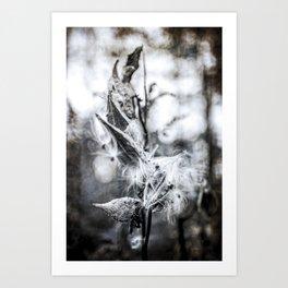 Rust_02 Art Print