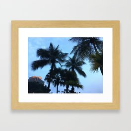 Palm trees at Sunway Lagoon Resort, Malaysia Framed Art Print