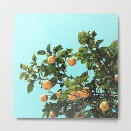 Summer Orange Tree Metal Print