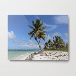 Dominican Republic beach Metal Print