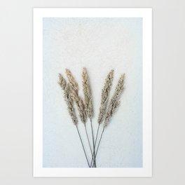 Summer Grass II Art Print