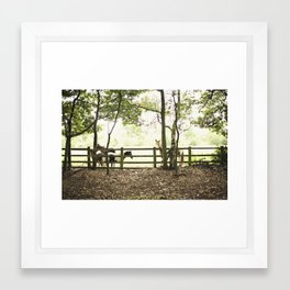 pony I Framed Art Print